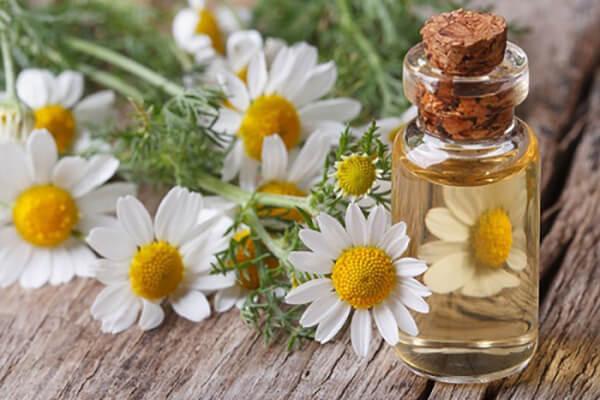 Maria Galland 5B Super Rejuvenating Cream