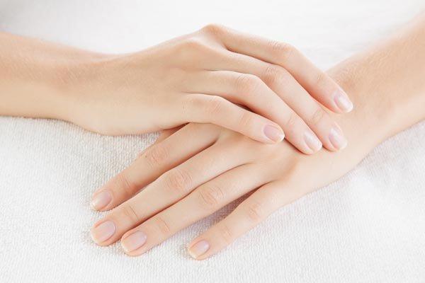 Kem dưỡng da tay Daily Hand Cream