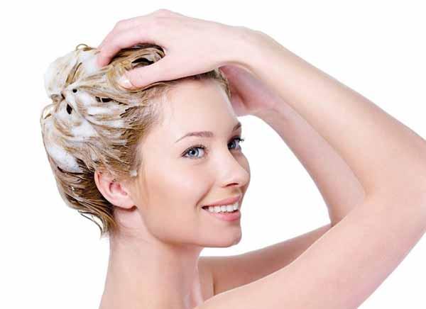 Lược gội đầu và tạo kiểu tóc Scalp Brush SHS