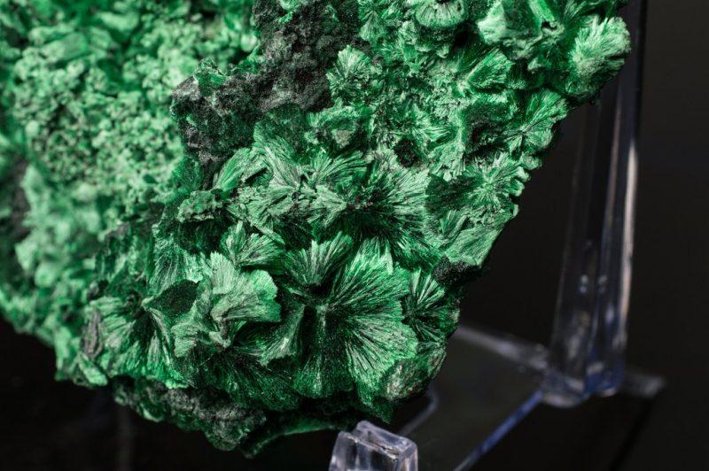 Tinh chất làm dịu da Maria Galland Essence 003 Malachite