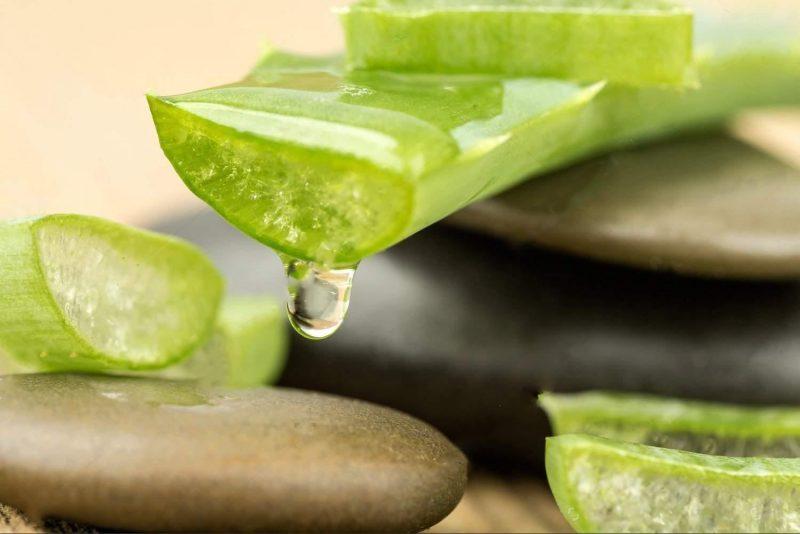 DR SPILLER ALOE VERA JELLY – Gel dưỡng ẩm lô hội giảm kích ứng da