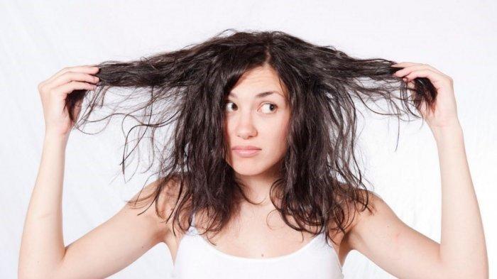 Dầu gội chăm sóc tóc dầu Carita Purifying Shampoo Icy Gel