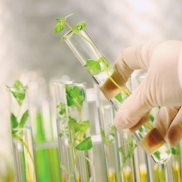 Kem dưỡng tế bào gốc trẻ hóa da Mesoestetic Stem Cell Active Growth Factor 50ml – Tây Ban Nha