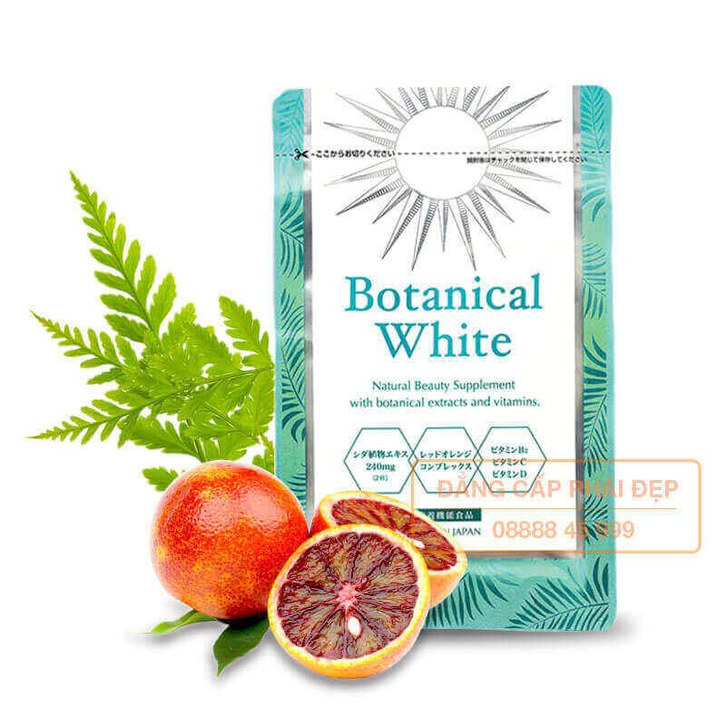 Viên uống chống nắng Botanical White bán chạy số 1 Nhật Bản