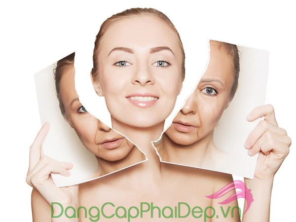 Collagen giúp tăng cường làn da săn chắc, ngừa lão hóa da sớm...