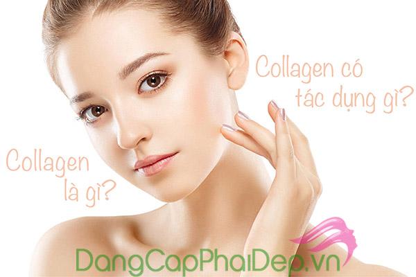 Tổng hợp những câu hỏi thường gặp về collagen