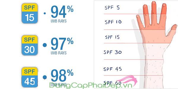Chỉ số SPF là định mức đô lượng khả năng chống tia UVB