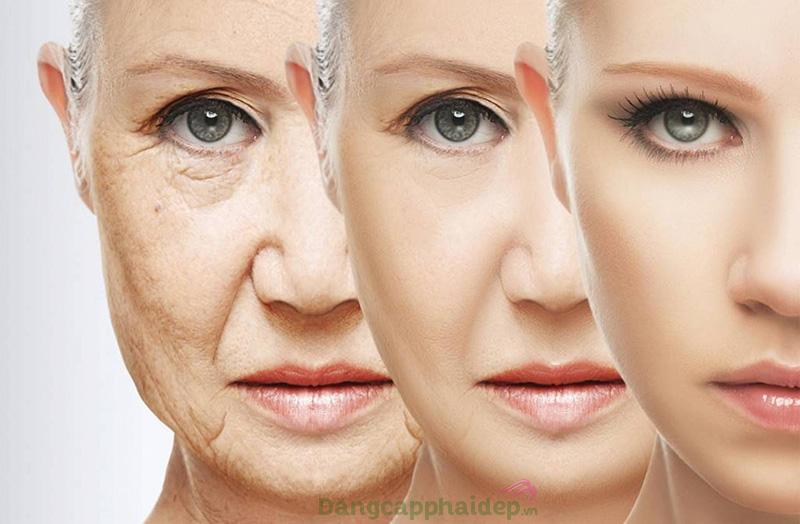 Collagen tươi của Nhật Bản mang đến rất nhiều lợi ích tốt cho làn da và cơ thể