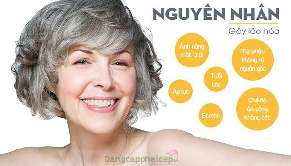 Nguyên nhân gây ra tình trạng lão hóa da.