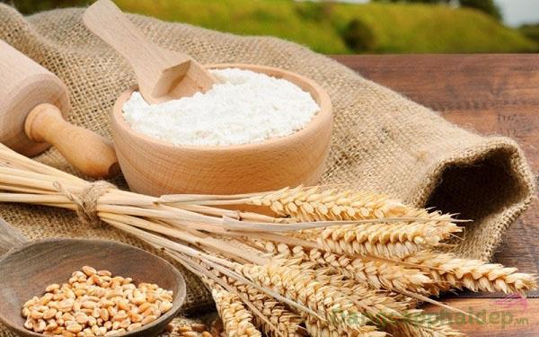 Chiết xuất tinh bột mầm gạo