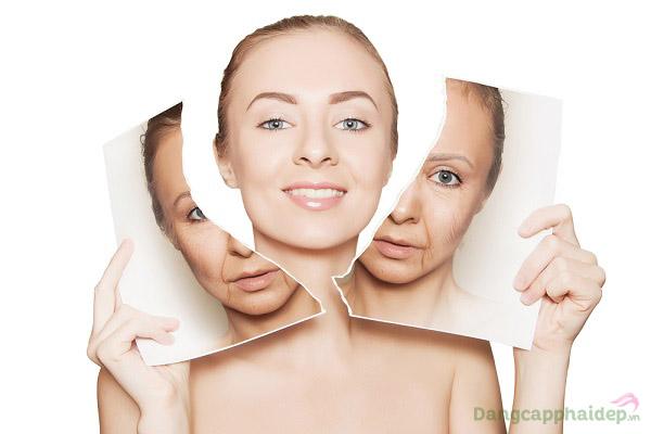 Collagen Elastine Ampoule mang lại hiệu quả làm mờ nếp nhăn, cải thiện da săn chắc, sáng khỏe chỉ sau vài tuần sử dụng.