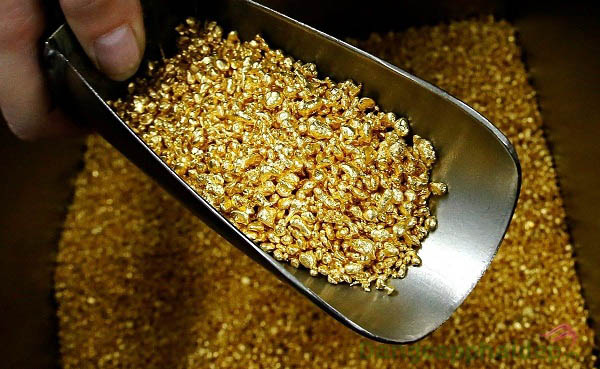 Chứa tinh chất vàng 24k