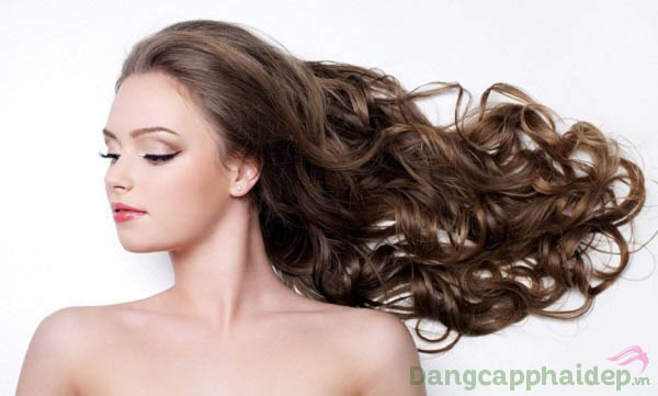 Hush & Hush Deeply Rooted chống rụng tóc, giúp tóc dày, dài, bóng mượt và khỏe mạnh tự nhiên