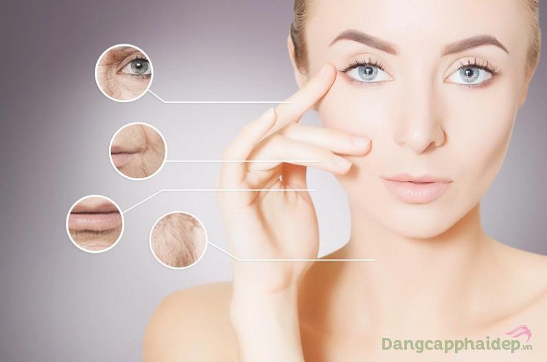 Lấp đầy nếp nhăn, trẻ hóa da hiệu quả với Cellular Wrinkle Prohibiting Serum