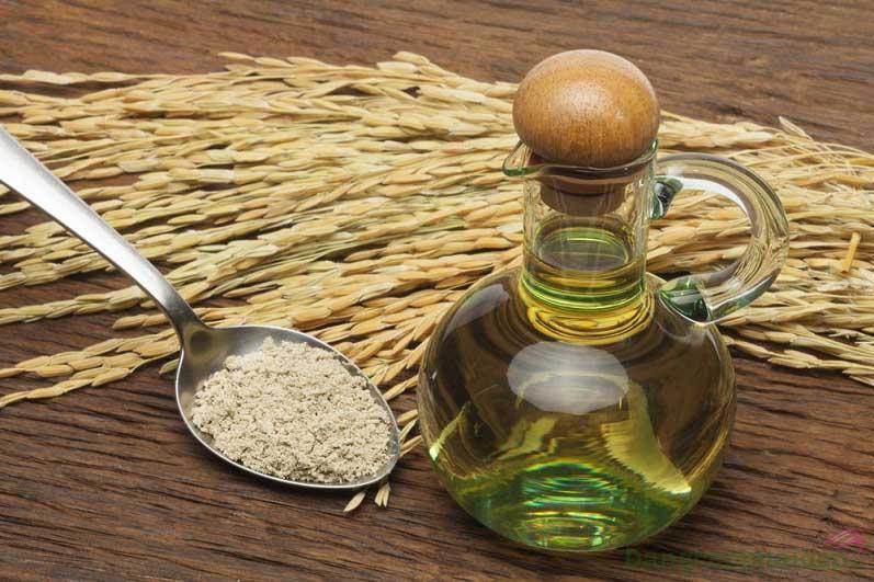 Chiết xuất dầu cám gạo