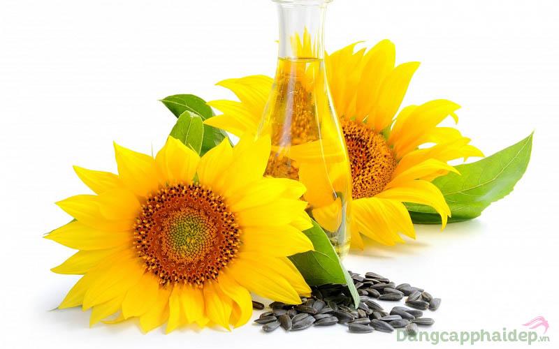 Tinh dầu hoa hướng dương.