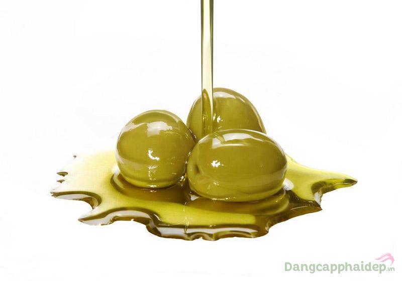 Squalane có trong sản phẩm là thành phần lipid thực vật có nguồn gốc từ dầu Olive
