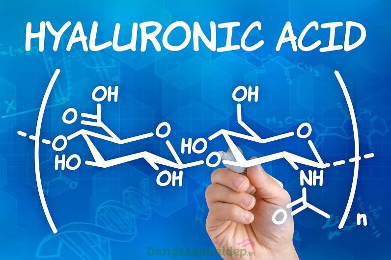 Hyaluronic acid là 1 trong những thành phần không thể thiếu trong sản phẩm chống lão hóa