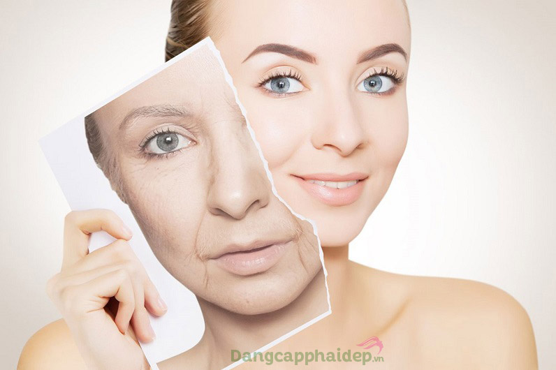 Dibi Lift Creator Intensive Liquid Cream giúp đảo ngược lão hóa, giúp giảm thiểu nếp nhăn, tái tạo da tươi mới