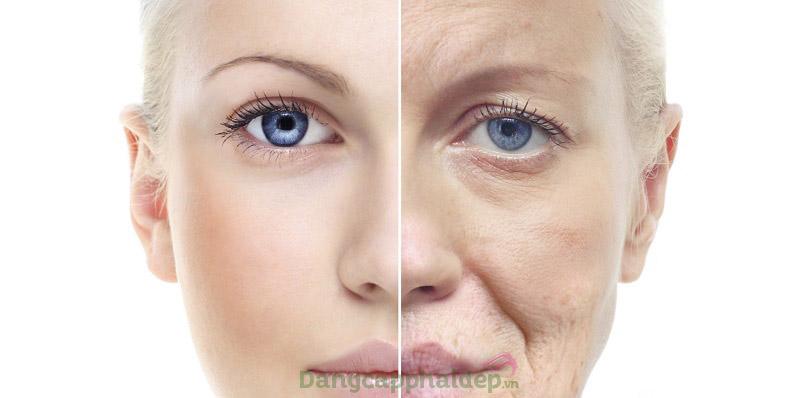 Muốn trẻ hóa da nhanh chóng, hãy sử dụng ngay sản phẩm.