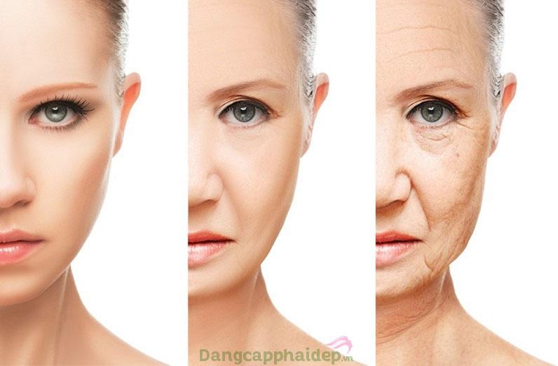 Nguyên nhân chính của việc da bị lão hóa là do oxy hóa