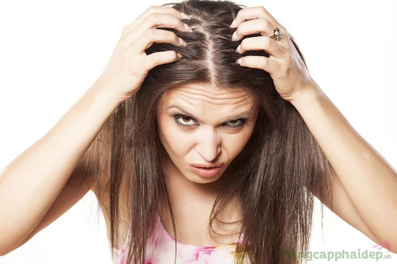 Ám ảnh mái tóc mỏng thưa lại dễ gãy rụng và xơ rối