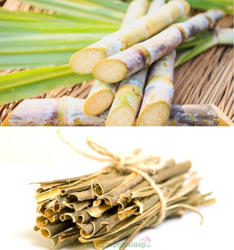 Thành phần glycolic acid được chiết xuất từ mía và salicylic acid từ vỏ cây liễu
