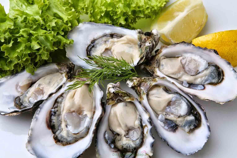 Hàu Nhật có thịt dày, vị ngọt đặc trưng khó nơi nào có được
