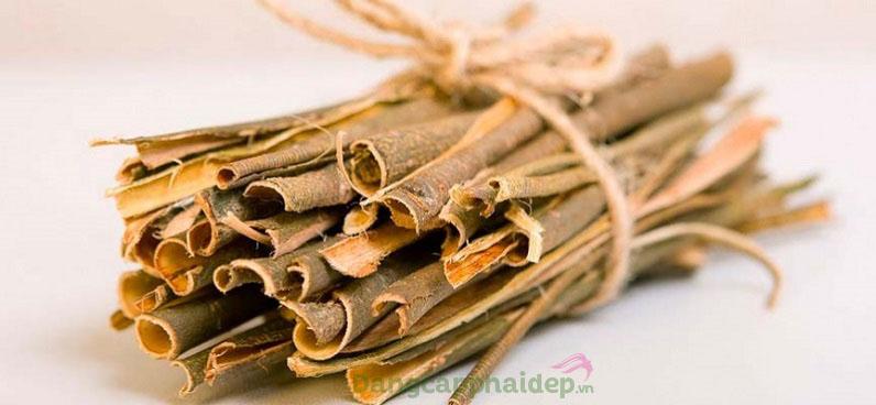Sản phẩm chứa chiết xuất vỏ cây liễu