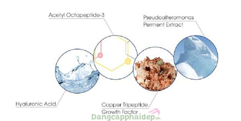 Is clinical youth eye complex chiết xuất từ các vi sinh vật lên men, Copper Tripeptide,...giúp tăng sinh Collagen và Elastin.
