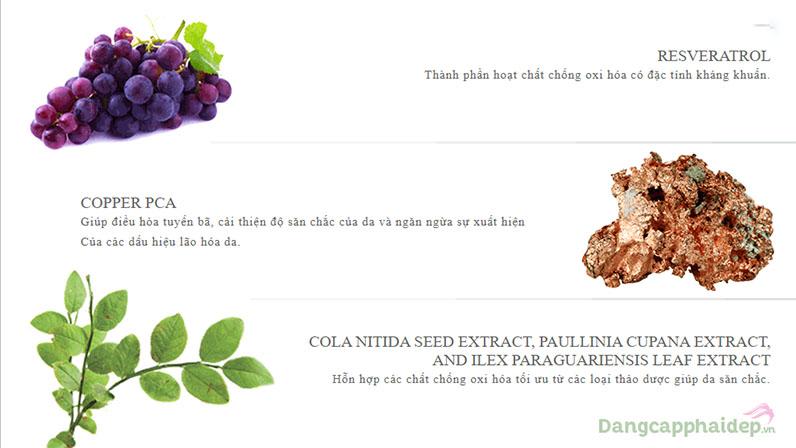 Chứa siêu khoáng chất Copper PCA và các chiết xuất thực vật nuôi dưỡng, phục hồi da.