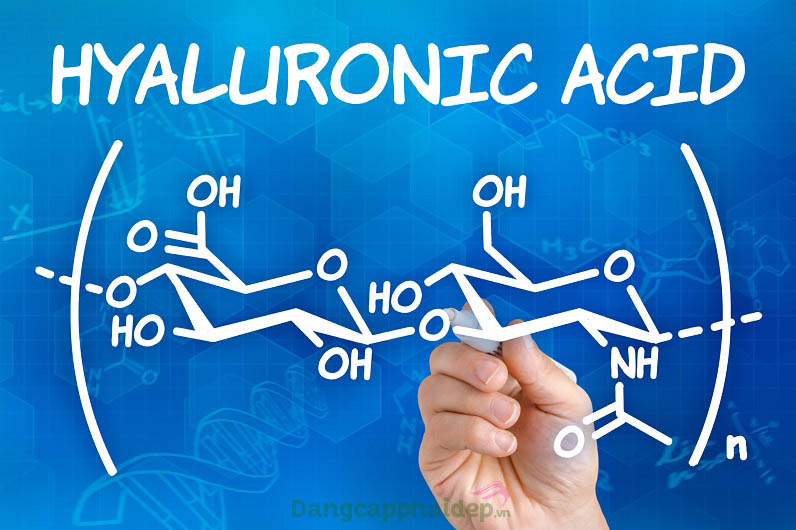 Hyaluronic acid 40% giữ nước, dưỡng ẩm, chống lão hóa.