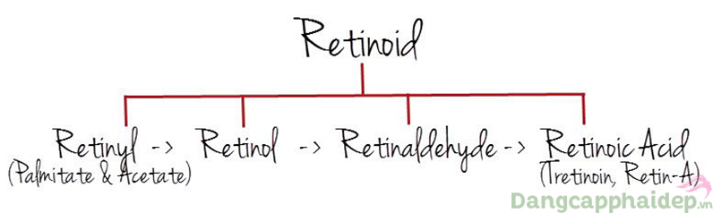 Các loại Retinoids và công dụng của từng loại.