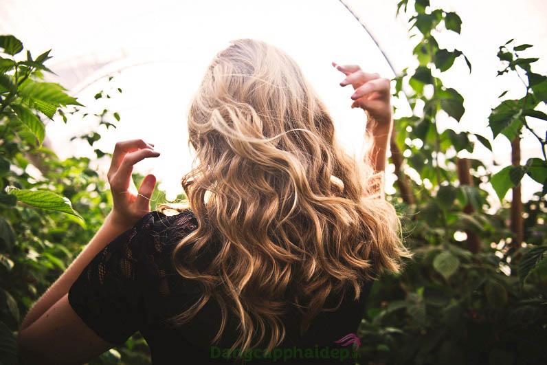 Bật mí cách chọn dầu gội cho tóc nhuộm giúp giữ màu tóc lâu phai