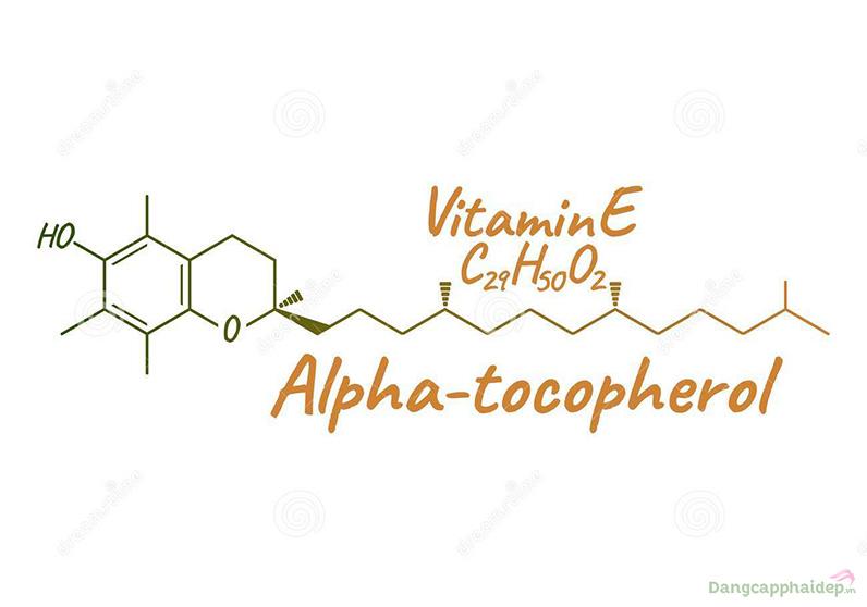 Vitamin E loại vitamin tuyệt vời để dưỡng ẩm và chống lão hóa.