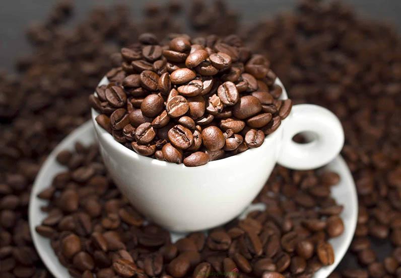 Chiết xuất caffein