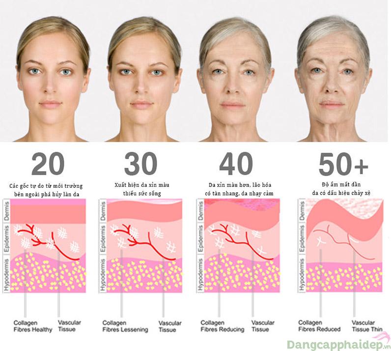 Theo năm tháng làn da sẽ dần bị mài mòn, hư tổn.