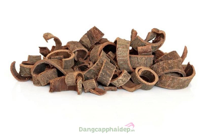 Chiết xuất vỏ cây mộc lan giúp làm dịu nhạy cảm da hiệu quả