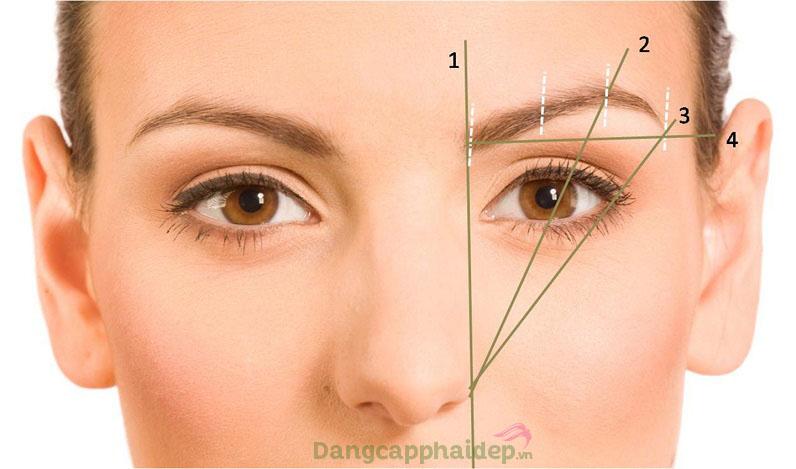Đánh giá lông mày đẹp phù hợp khuôn mặt cần quan tâm đến vị trí các điểm lông mày