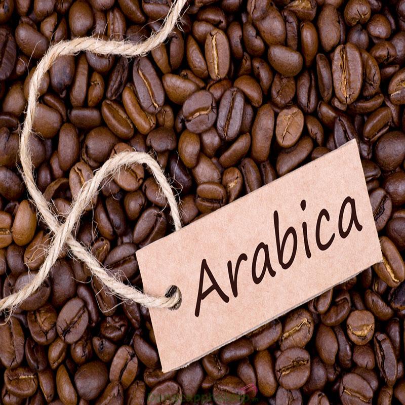 Chiết xuất cà phê Arabica