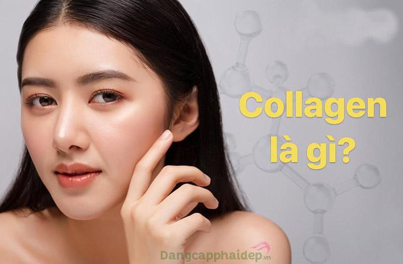 Collagen là thành phần quan trọng với da