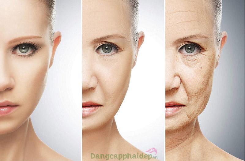 Hydrolyzed collagen là gì? Khác biệt gì so với collagen thường