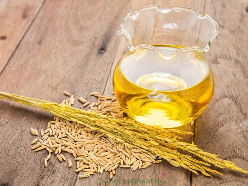 Tiết lộ công dụng của dầu cám gạo trong làm đẹp