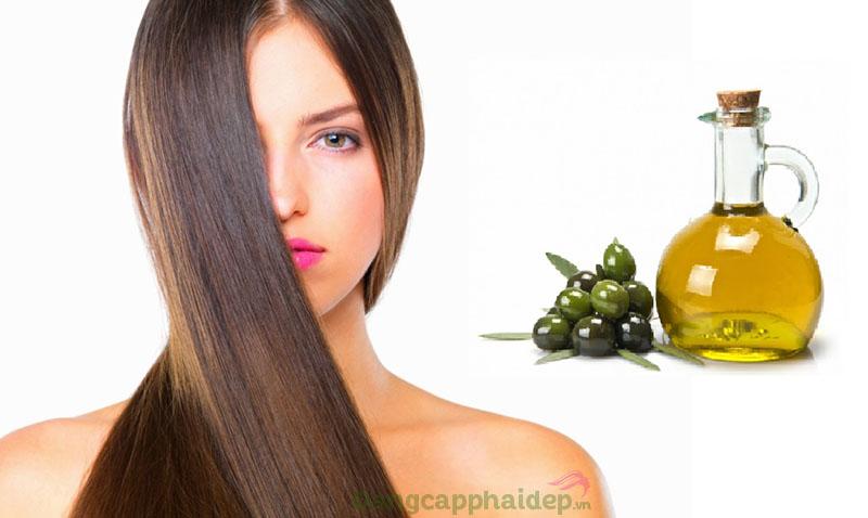 Dầu oliu dưỡng tóc loại nào tốt?