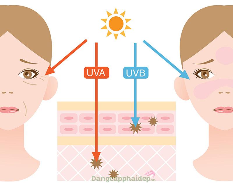 Tia cực tím là nguyên nhân hàng đầu gây lão hóa da, ung thư da...