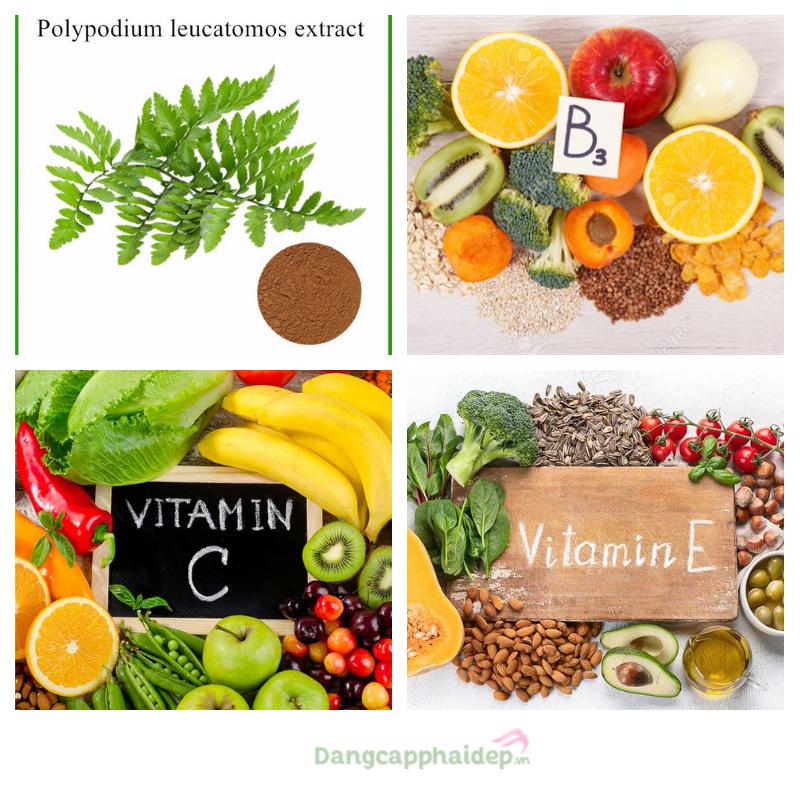 Chứa công nghệ Fernblock độc quyền từ cây dương xỉ kết hợp cùng các vitamin và khoáng chất bảo vệ làn da, sức khoẻ.
