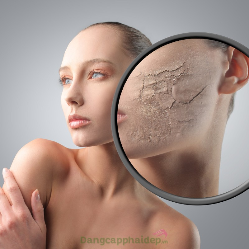 Md:ceuticals Md Complex Anti-Pollution SkinProtect Shield